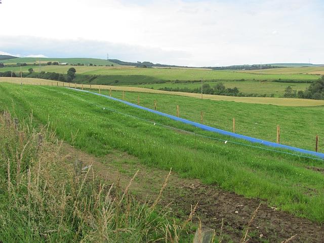 Field by Auchenblae