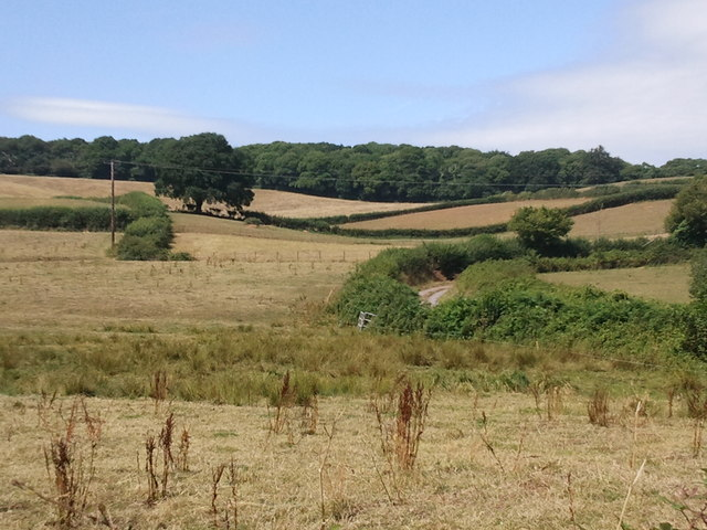Fields and the lane to Ash Farm