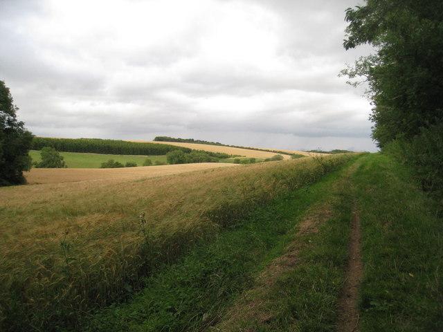 Bridleway to Hatcliffe