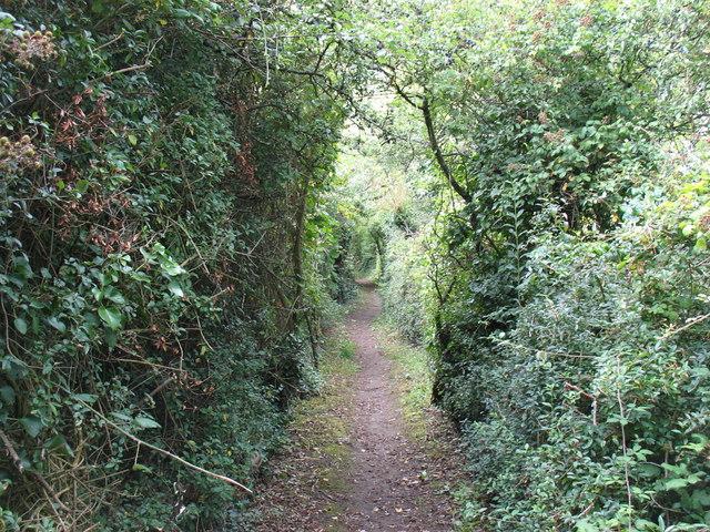 Crickham Lane