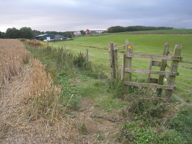 The footpath to Beelsby (3)