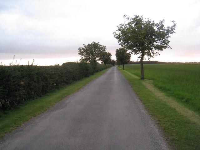 Bridleway towards Cuxwold