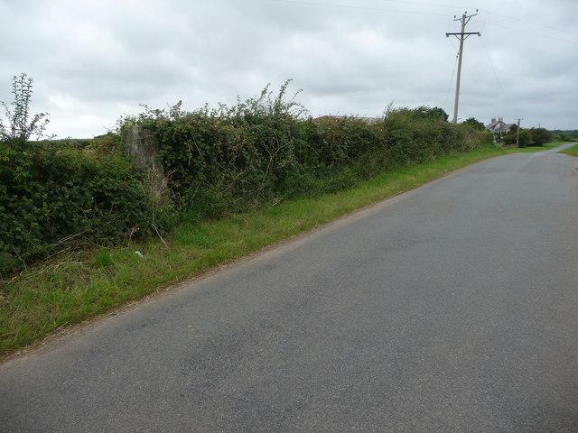 Trig point in the hedgerow near Tair Croes Farm