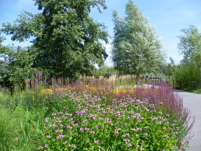 The Sustainable Garden, London Wetland Centre