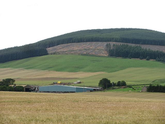 Clear fell, Strathfinella Hill