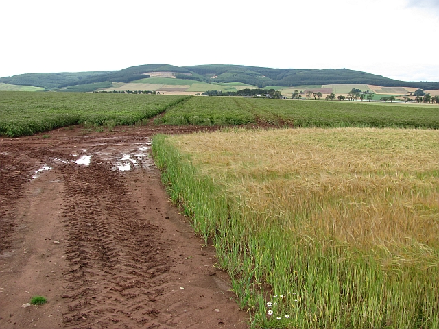 Arable land, Howe of the Mearns