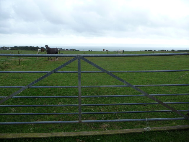 Paddocks near Groes Farm
