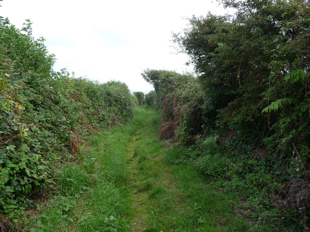 Sheltered path and bridleway near Southerndown