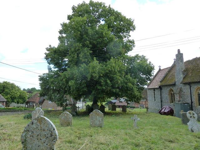 St Mary, Longstock: churchyard (i)
