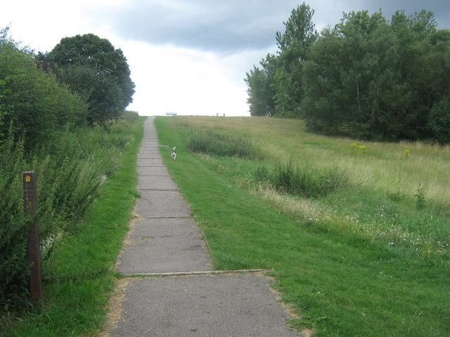 Green Chain Walk climbs hill in East Wickham Open Space