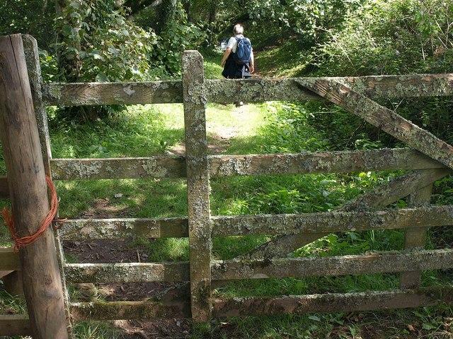 Gate near Overbeck's