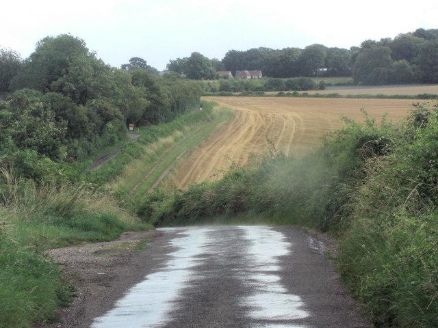 Lane across Preston Down