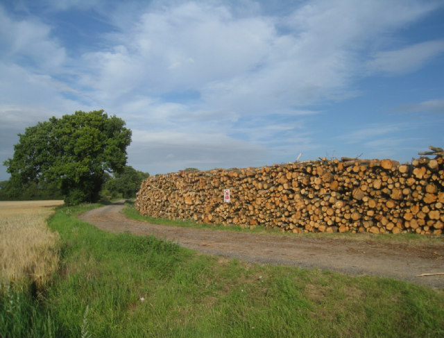 Log pile at Breach Farm