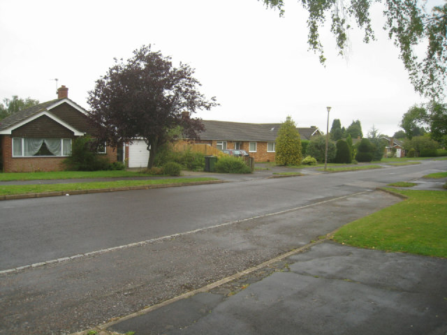 Looking along The Drive