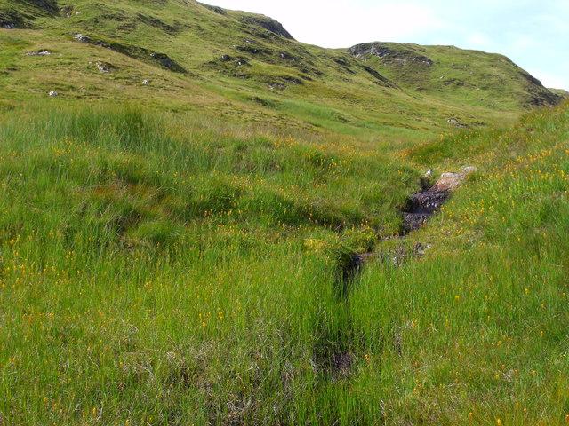 Side-shoot of tributary to Strone Burn near Loch Katrine