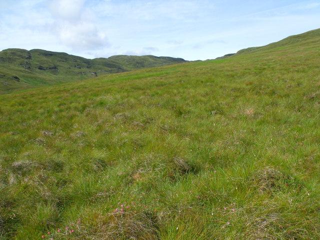 Rough vegetation skirting the south ridge of Beinn Bhreac near Loch Katrine