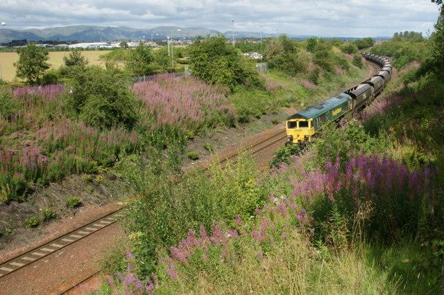 Freight train at Carmuirs, near Falkirk
