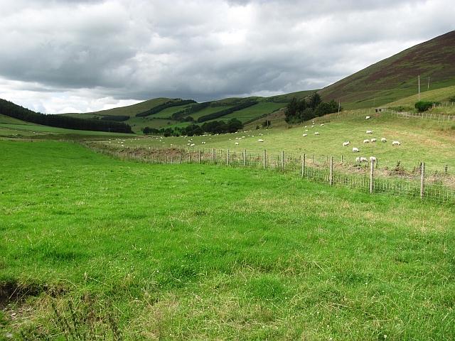 Kilbucho Glen, Mitchelhill