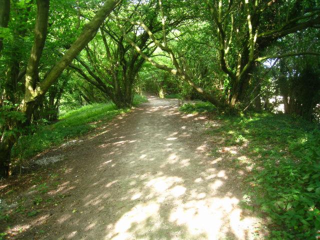 Path alongside the railway