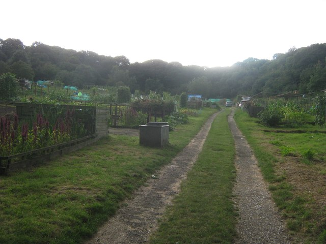 Lesnes Abbey Woods Allotments