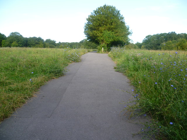 Path across Jubilee Country Park