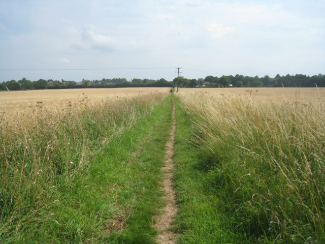 Path to Pardown