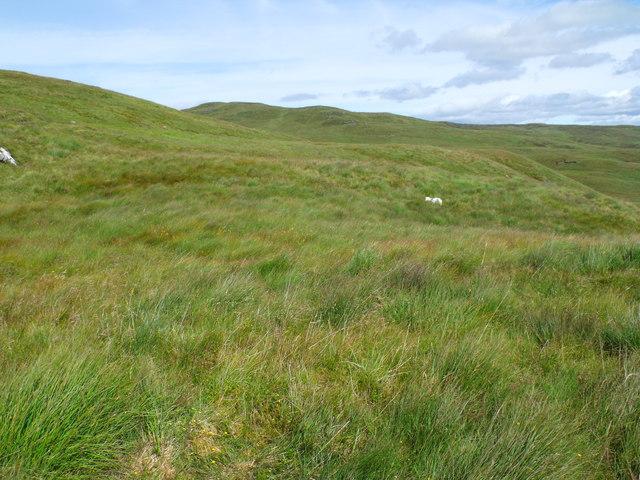 Plateau area on the south ridge of Meall Gaothach near Loch Katrine