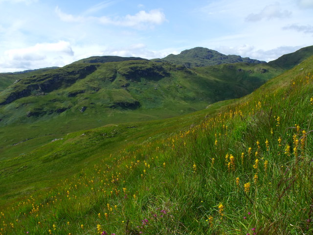 South-west slopes of Meall Gaothach near Loch Katrine