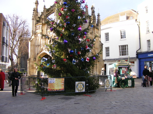 Chichester Christmas Tree