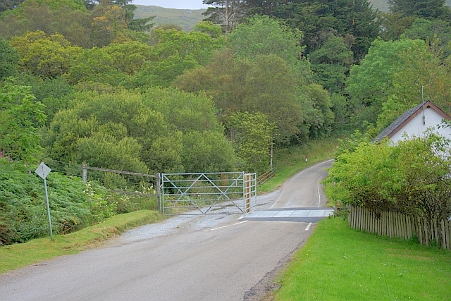 Cattle Grid, Glenmore