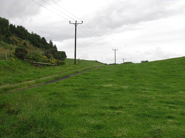 Grassland, Kinloch