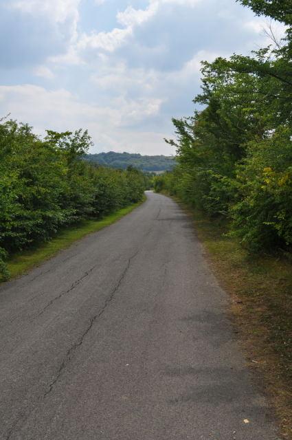 Bibsworth Lane Looking South