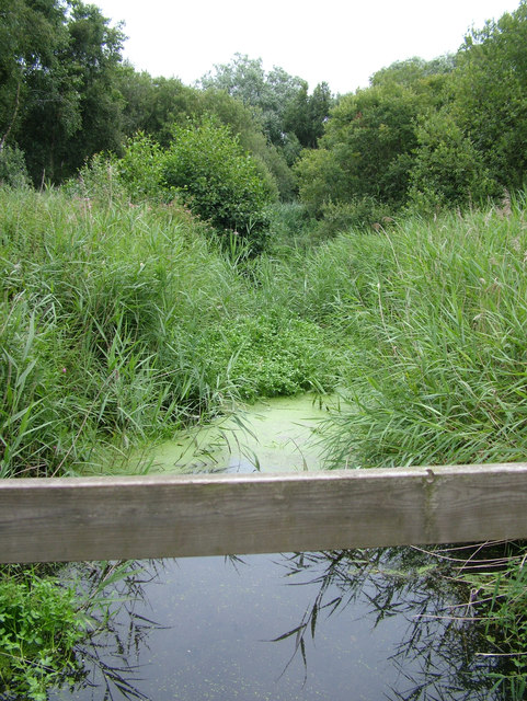 Rivulet near Sizewell Nuclear Power Station