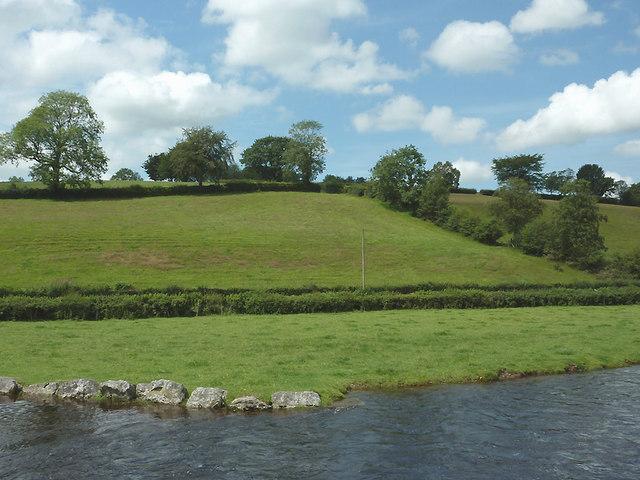 Afon Teifi and hillside west of Pont Gogoyan, Ceredigion
