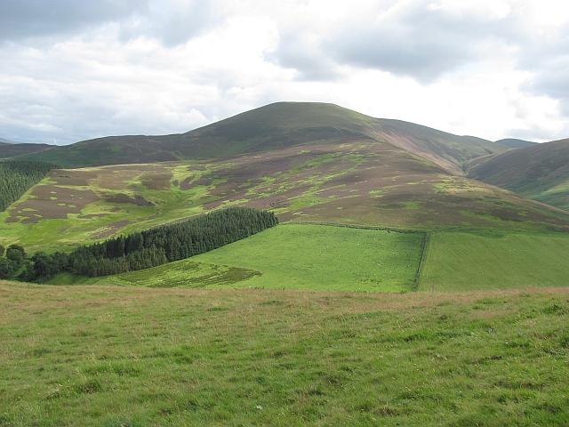 Cardon Hill