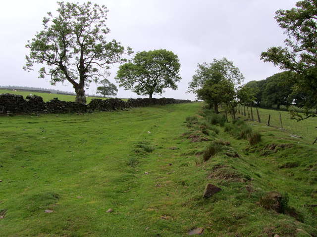 Countryside around Lindley
