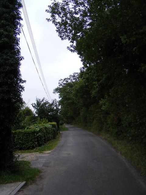 Shop Road