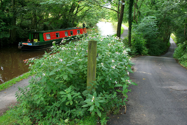 Peak Forest Canal and lane