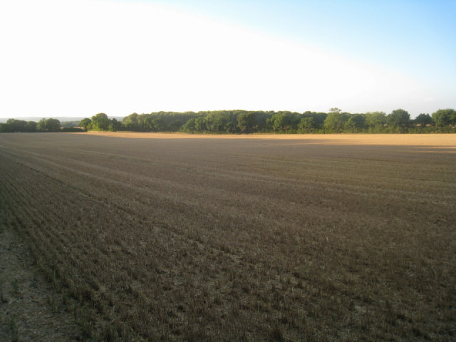 Harvested wheat field - Pardown