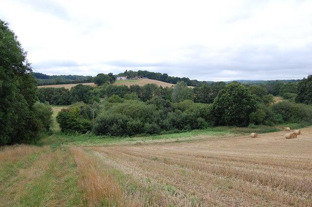 Crop Fields near Squibs Farm