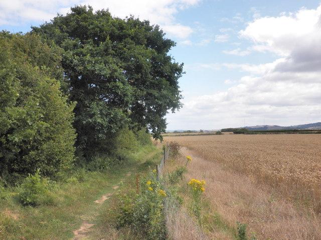 West Somerset coast Path