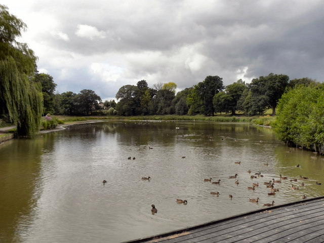 The Lake at Abbey Fields