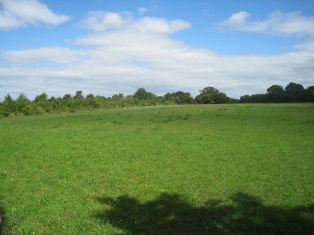 Field behind Park Farm