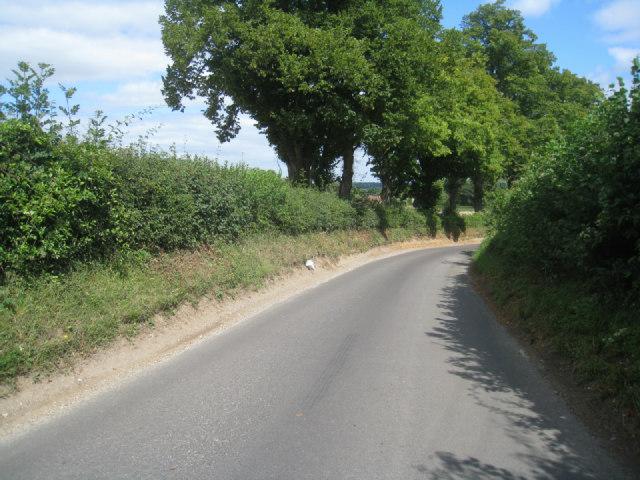 Lane south of Oakley