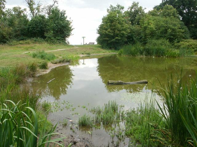 Pond on Barn Hill, Wembley