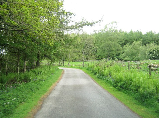 The driveway to Kirroughtree House
