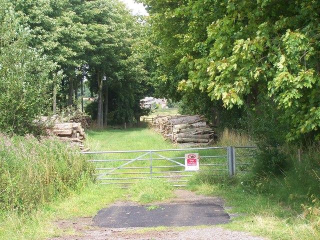 Footpath To Weekley