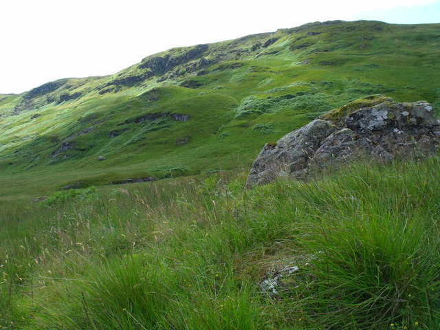 Looking across the lesser Strone to the slopes of Meall Mor near Loch Katrine