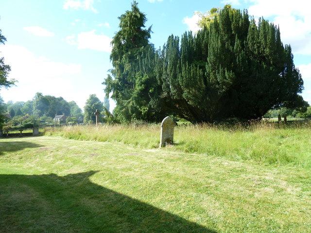 Saint Andrew, Hurstbourne Priors: churchyard (f)