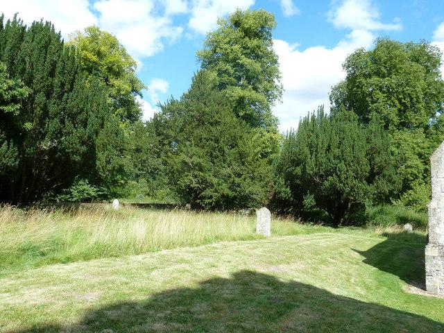 Saint Andrew, Hurstbourne Priors: churchyard (g)